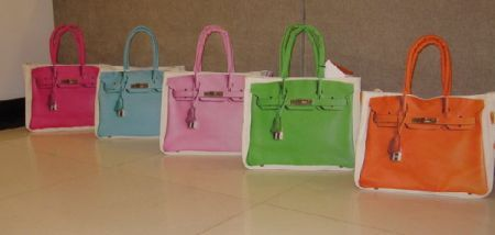 birkin_canvas